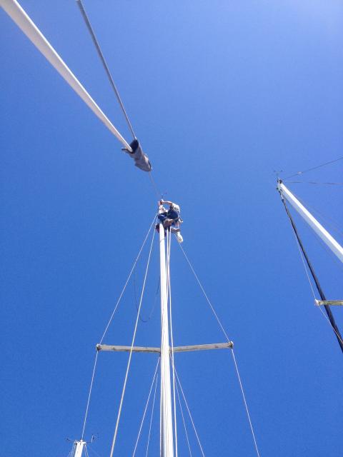 Photo of Catalina 30 sailboat